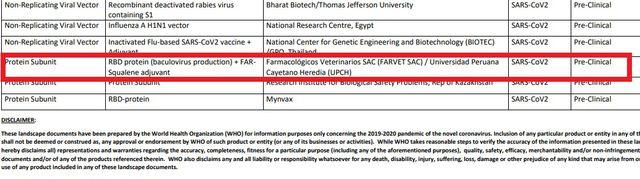 La OMS incluyó a los dos proyectos de vacuna contra el COVID-19 de la UPCH y Farvet en listado de desarrolladores.