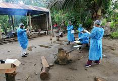 """Grupo de expertos de Harvard: la probabilidad de que se produzca otra pandemia es """"mayor que nunca"""""""