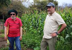 Profesores y alumnos en pie de lucha para proteger más de un millar de árboles de la Universidad Agraria