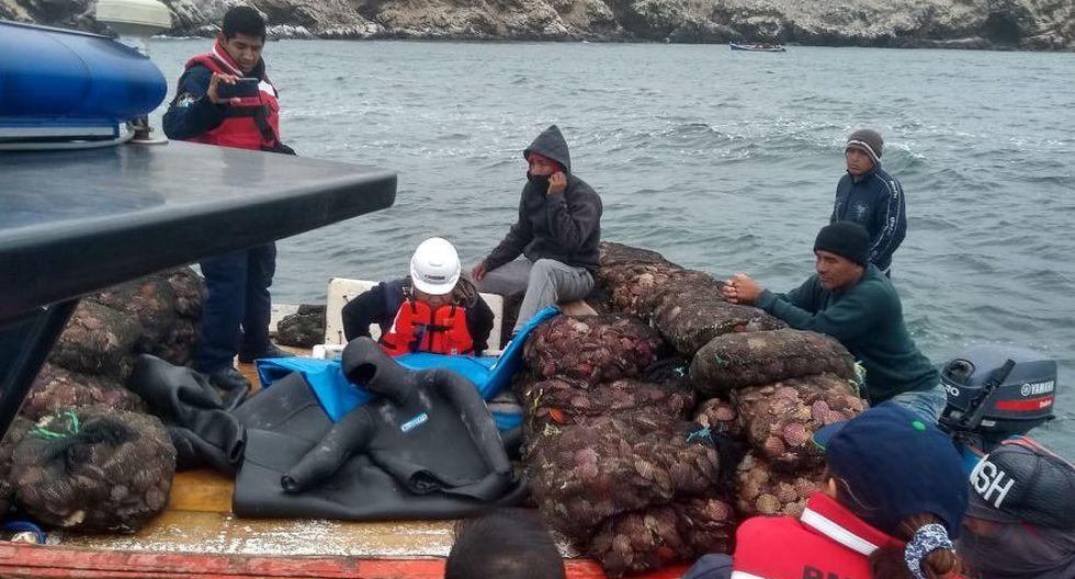 Piura: intervienen 4 embarcaciones que extraían conchas de abanico en zona protegida