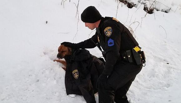 La foto en la que un policía consuela a un perro que había sido atropellado se hizo viral en Facebook | Foto: Chautauqua County Sheriff