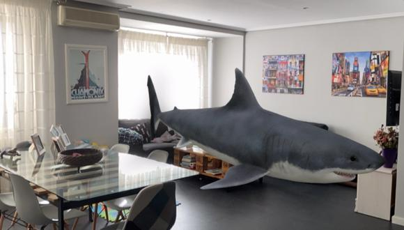 Google tiene una gran variedad de animales en 3D que puedes ver utilizando realidad aumentada.