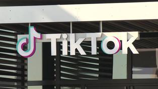 Reino Unido: demandan a TikTok por recopilar datos personales de millones de niños