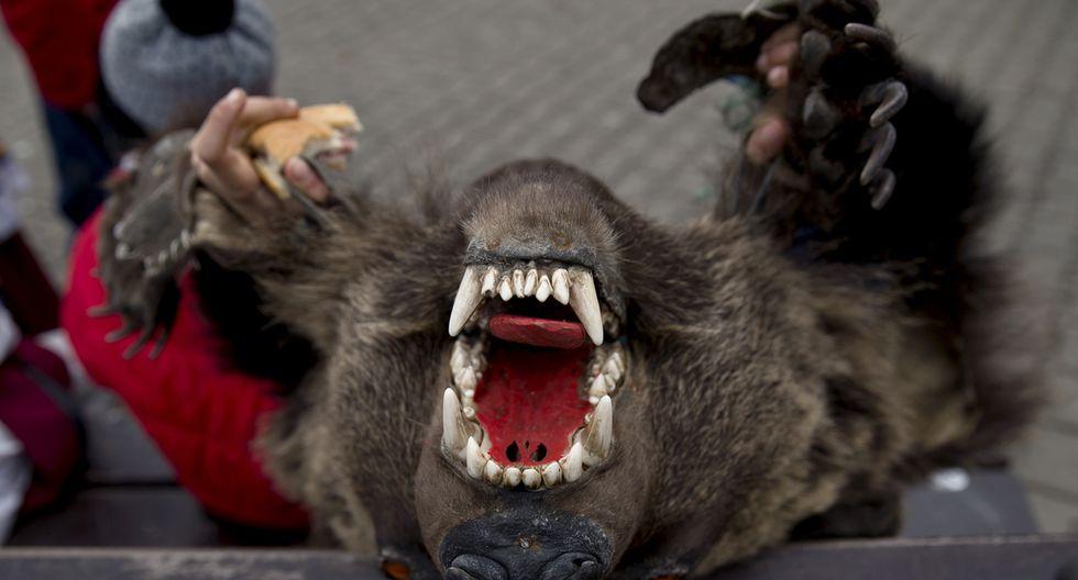 Rumania y su tradicional paseo de osos por Navidad - 3