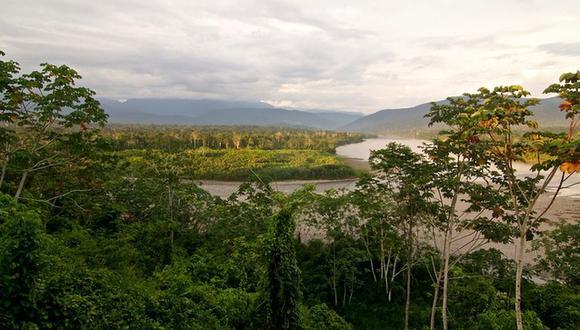 Las iniciativas del Minam tienen como finalidad generar empleo para los pueblos indígenas. (Foto: Minam)
