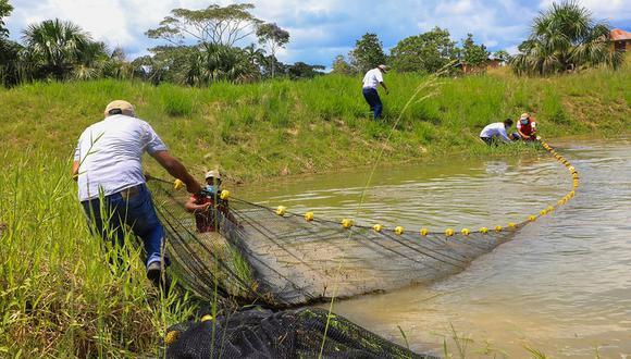 Norma le otorga facultades a los gobiernos regionales para que personas de la zona puedan iniciar y solicitar una concesión de acuicultura en el futuro. (Foto: Produce)