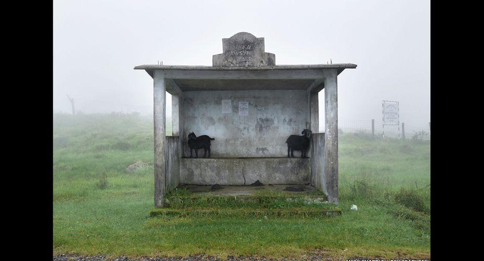 Conoce Mawsynram, el lugar más lluvioso del mundo - 9