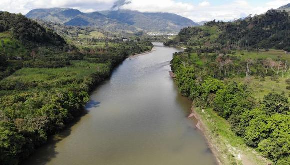 Los bosques tropicales situados en el Amazonas, el Congo e Indonesia son los que más potencial tienen para almacenar una mayor cantidad de dióxido de carbono. (Foto: Pixabay)