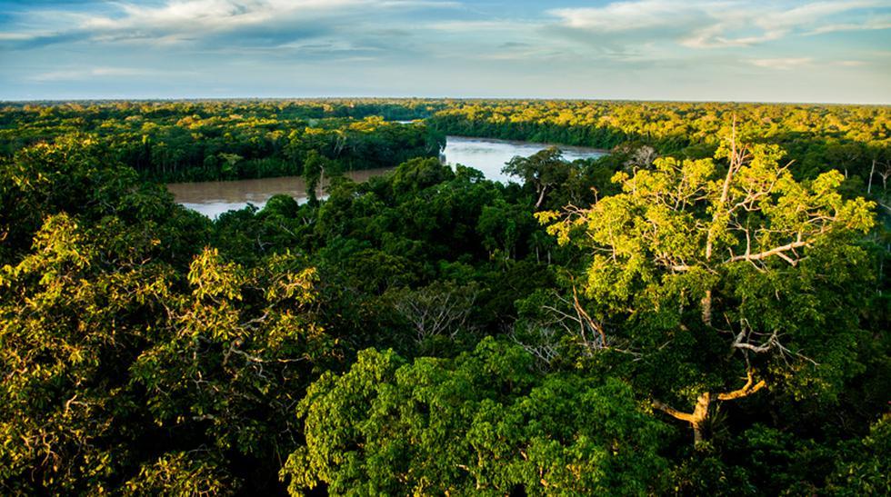 Riqueza natural: Descubre la Reserva Nacional Tambopata - 1
