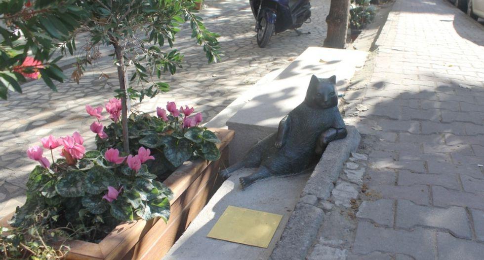 6. Estambul (Turquía). Es la ciudad de gatos con popularidad mundial. El más famoso es Tombili que, tras su muerte, tiene una estatua de bronce en su honor. (Foto: Shutterstock)