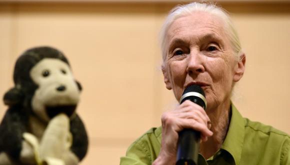 Jane Goodall confía en los jóvenes para un cambio global