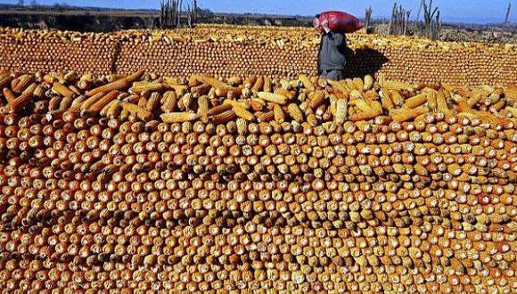 FAO: Precios de los alimentos retrocedieron 19% en el 2015