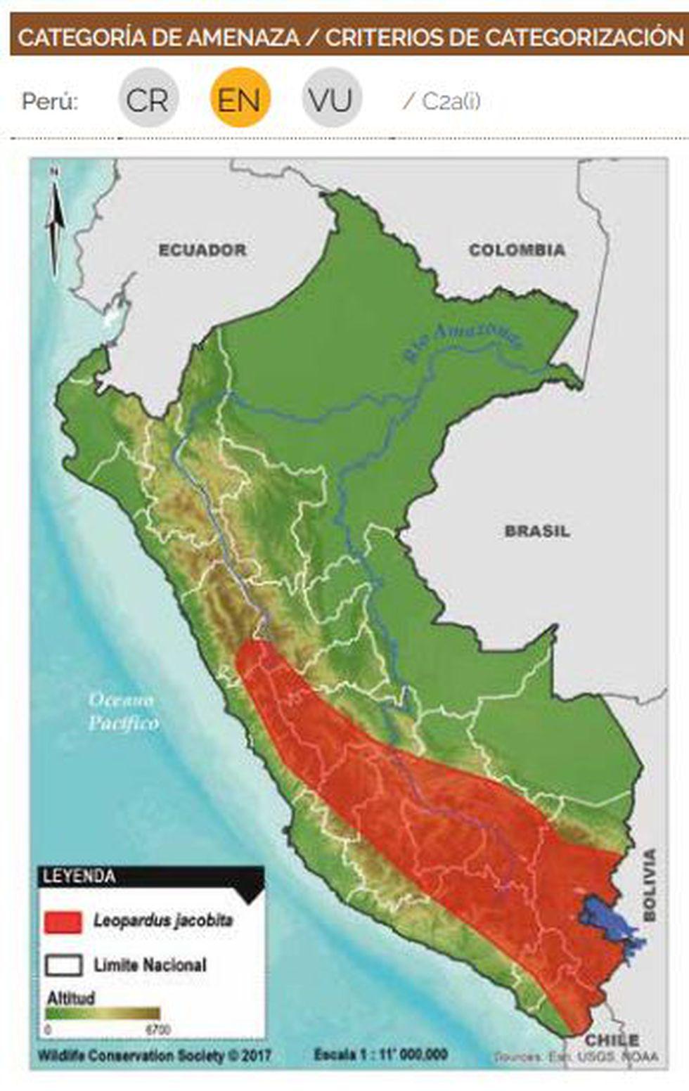 Zonas de distribución del Gato andino en Perú. (Imagen: Serfor)