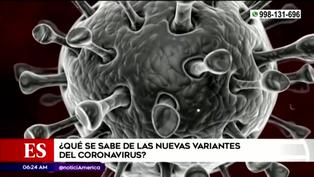 COVID-19 en Perú: ¿Qué se sabe de las nuevas variantes del SARS-CoV-2?
