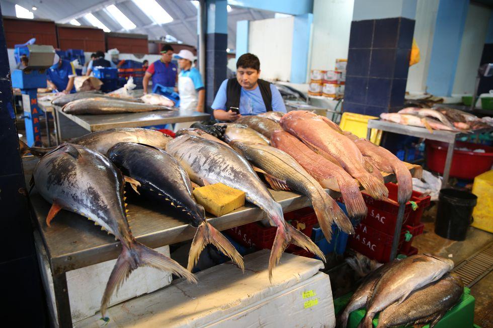 Una investigación sobre sustitución de especies determinó que hasta el 70 % de los pescados comercializados no corresponde a la especie que se indica. Foto: Oceana.