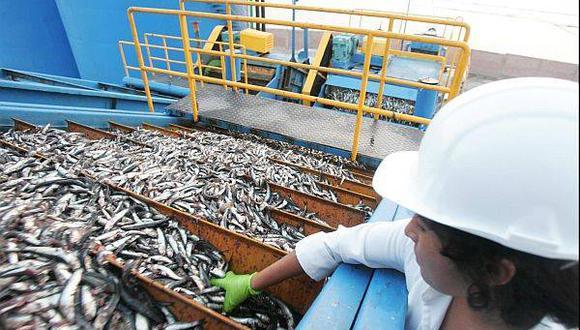 Baja producción de harina de pescado en Perú elevaría su precio