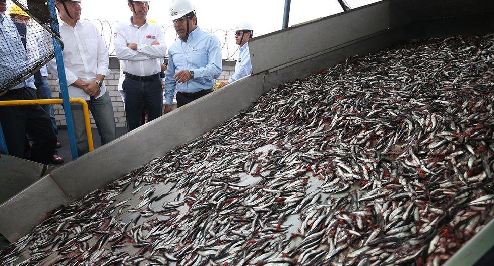 """Asimismo, Abregú dijo que -si bien en los inicios de las prepublicaciones para adoptar el reajuste existieron opiniones contrarias, como de la Sociedad Nacional de Pesquería- finalmente el Produce se """"entendió"""" con los agentes del sector, luego de explicar las razones y metodologías que usó el Estado."""