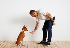WUF: ¿Cómo saber si debes adiestrar a tu perro?