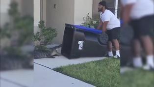 Viral: Valeroso hombre captura a un caimán americano con un bote de basura de plástico