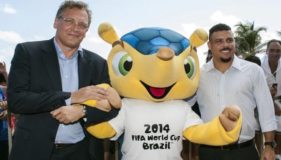 """Fuleco y el """"gol ambiental"""" del Mundial de Brasil"""