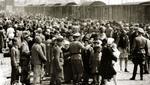 En solo ocho semanas en 1944, unos 424.000 judíos fueron deportados a Auschwitz-Birkenau. (Foto: Getty Images, via BBC Mundo)