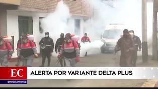 Coronavirus en Perú: conoce las características de la variante Delta plus