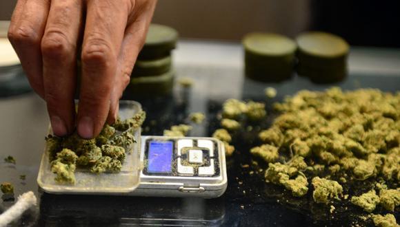 El ministro de Agricultura, Jorge Montenegro, indicó a El Comercio que se está trabajando con los sectores involucrados para aprobar las disposiciones pendientes del reglamento que la Ley que aprueba el uso del cannabis medicinal. (AFP)