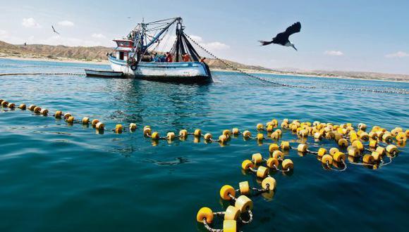 Suprema permite pesca industrial de anchoveta desde la milla 5