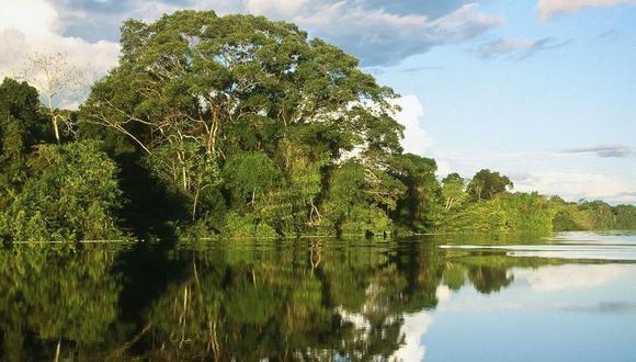 Se cuestiona que el plan de gobierno de los dos candidatos no exista un enfoque hacia la Amazonía. (Foto: GEC)