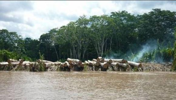 Frontera en el Cenepa es vulnerada por madereros de Ecuador