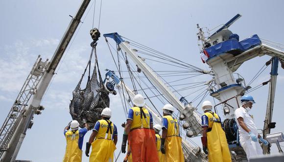 En febrero, el sector Pesca disminuyó su producción en 9,47% como resultado de la menor captura de anchoveta para consumo industrial (-56,0%) por el término en enero de la segunda temporada de pesca norte-centro.