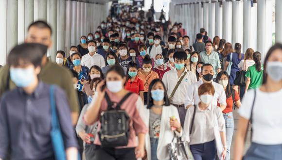 Tras los resultados, los científicos se proponen ahora evaluar la persistencia de la respuesta de los anticuerpos a largo plazo y su capacidad de neutralizar el virus. (Foto referencial: Shutterstock)
