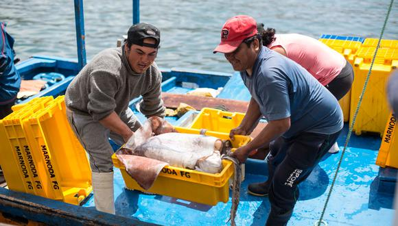 La pesca alcanzó los S/ 468.8 millones en junio. (Foto: Difusión)