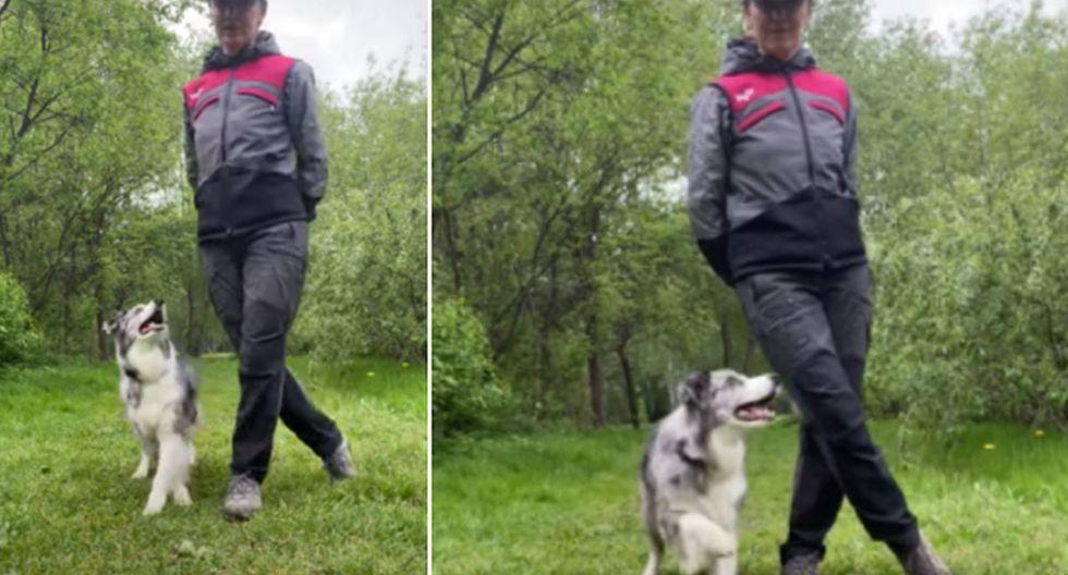 El perro sorprendió a todos al realizar baile sincronizado con su dueña. (YouTube: ViralHog)