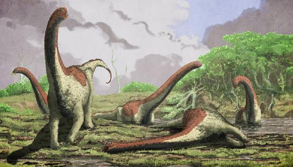 """Los dinosaurios saurópodos se """"repartían"""" los alimentos"""