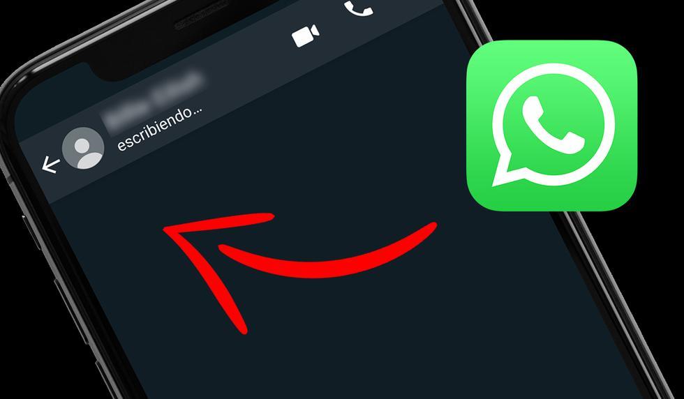 FOTO 1 DE 3 | ¿Ya no quieres que nadie vea 'escribiendo' en WhatsApp? Usa este truco | Foto: WhatsApp (Desliza a la izquierda para ver más fotos)