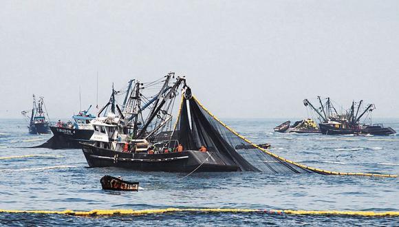 En junio de 2020, la captura de anchoveta ascendió a 1 millón 331 mil toneladas. (Foto: GEC)
