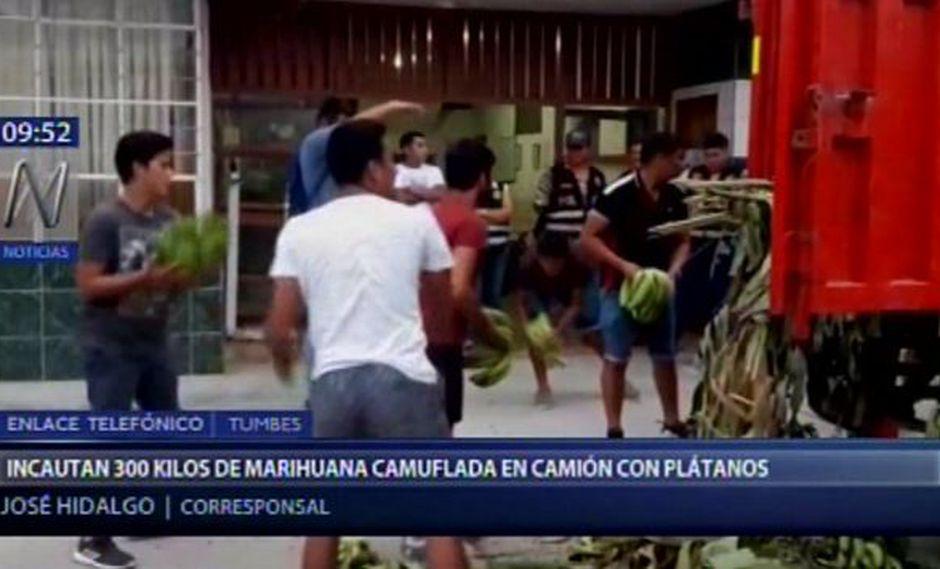Incautan aproximadamente 300 kilos de marihuana camuflada en camión de plátanos en Tumbes. (Captura: Canal N)