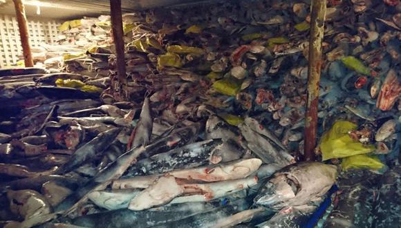 Miles de tiburones fueron hallados en un barco chino que se desplazaba por las Galápagos.