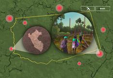 Narcotráfico arrasa bosques de indígenas shipibo y los obliga a replegarse en Perú