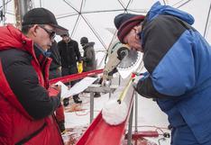Científicos descubren virus de 15.000 años de antigüedad congelados en un glaciar