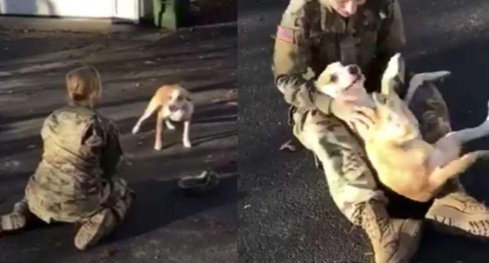 El emotivo encuentro entre Murphy, la mascota de la familia y su dueña. (Foto: Captura de video de Twitter)