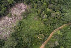 El peligroso camino de la reactivación económica en la Amazonía peruana