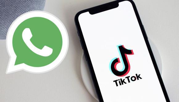 Conoce las dos formas de publicar tus videos favoritos de TikTok en tus estados de WhatsApp (Foto: Mag / Archivo)