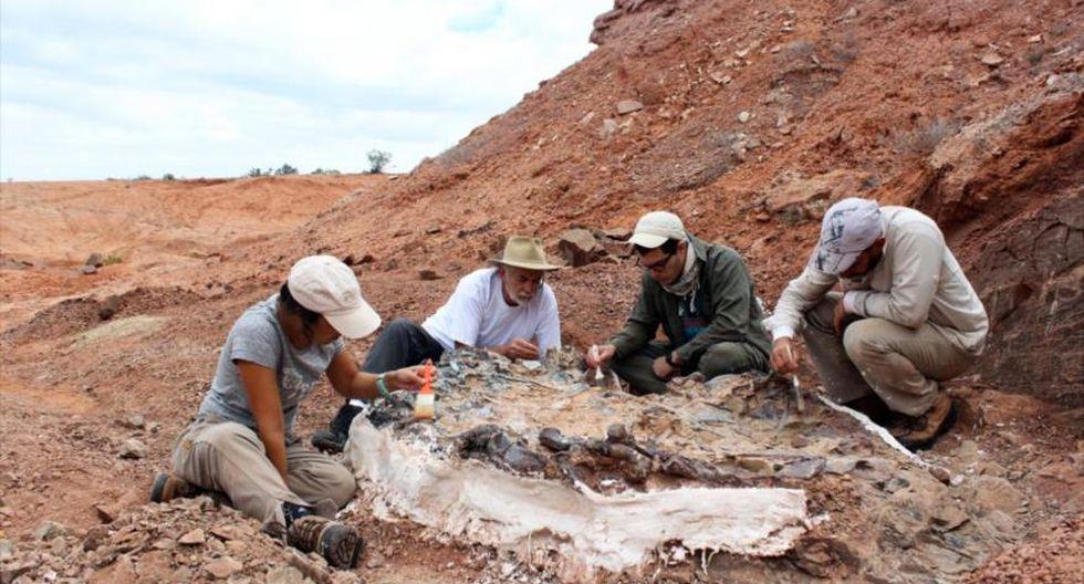 Los abelisaurios son una familia de dinosaurios terópodos. (Foto: Freepik/referencial)