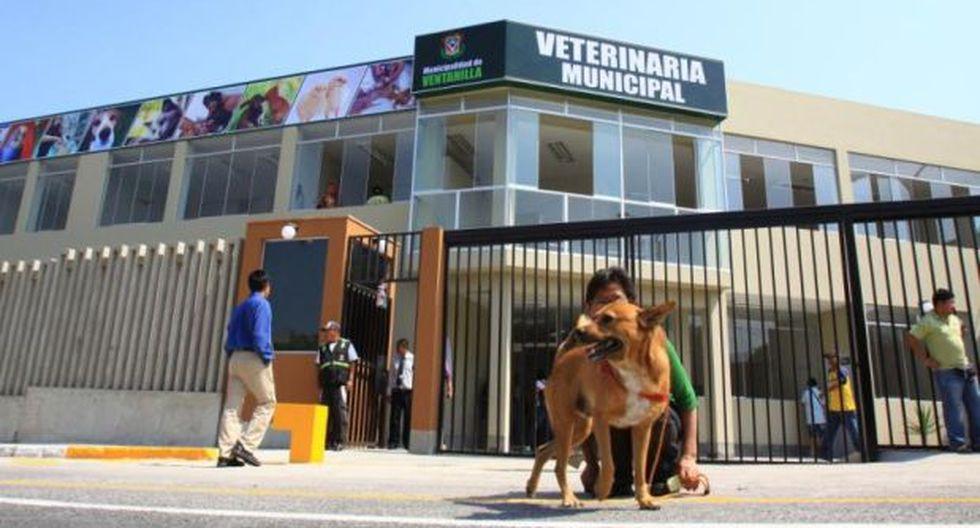Ventanilla: campaña de esterilización de mascotas a bajo precio