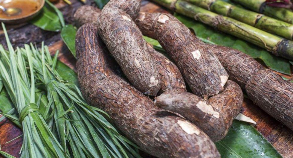 La yuca es un alimento básico en los países tropicales. Pero no hay que confundirla con la otra yuca, la amarga o brava. (Foto: Omar Lucas/Difusión)