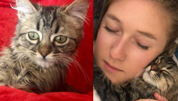 Selena Ali y su gato peruano Lee, cuando todo era felicidad.
