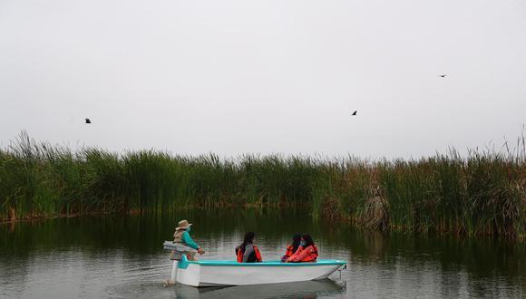 Pantanos de Villa, el único humedal urbano de Lima, alberga 210 especies de aves residentes (30%) y migratorias (70%), 65 especies de plantas, 53 de insectos, 14 de peces, 54 de arácnidos, 5 de reptiles y 8 de mamíferos. Foto: HugoCurotto / @photo.gec