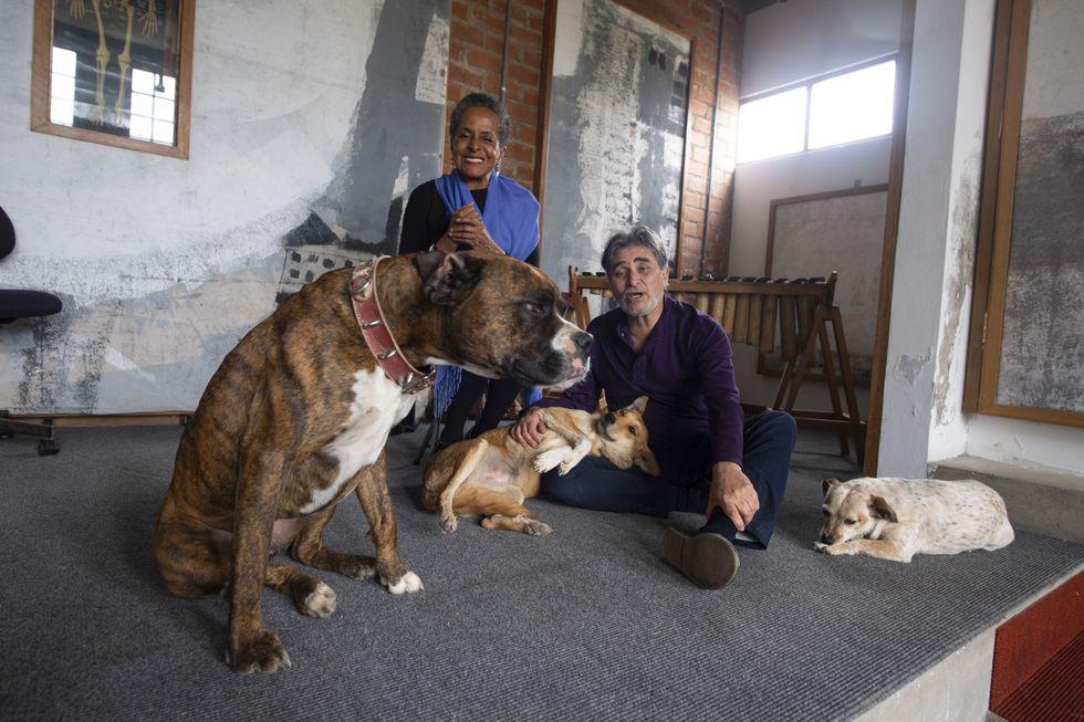 EN FAMILIA. Mambo, Tico, Luna y Nini acompañan a Susana y Ricardo en su casa-estudio-escuela de Cañete.